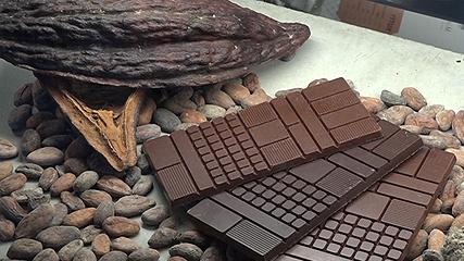 究極の手作りチョコレート カカオを味わう